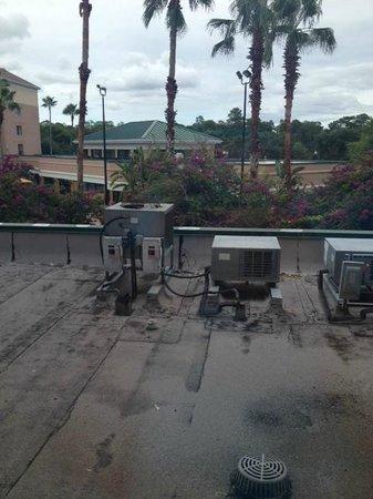 Courtyard Orlando Lake Buena Vista in the Marriott Village: Hotel staff said this was a pool view.