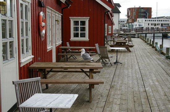Anker Brygge: next door