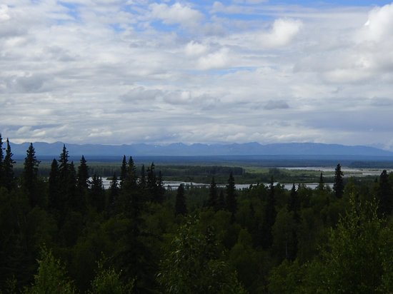 Denali Overlook Inn: View of Mt. McKinley from house