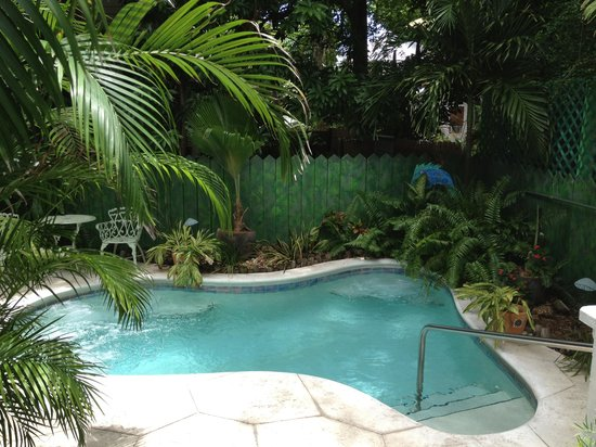 Ambrosia Key West Tropical Lodging: Jacuzzi outside of Jungle Suite