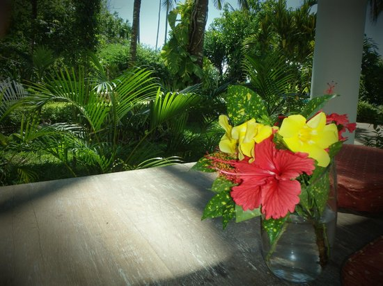 Galu Sea Lodge -Tamani: Fresh flowers provided by househelp everyday