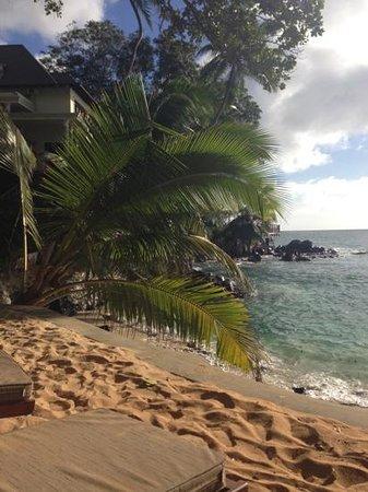 Hilton Seychelles Northolme Resort & Spa: vue plage privée