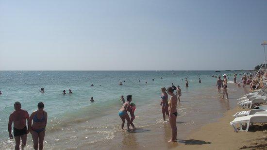 Hotel Excelsior: ближайший пляж