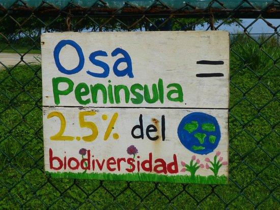 Corcovado National Park: Lugar del mundo con mas biodiversidad