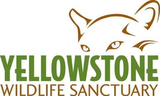 Yellowstone Wildlife Sanctuary : logo