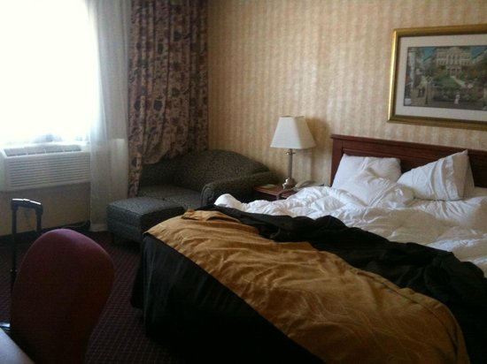 Comfort Inn Toronto Airport: King room