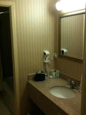 Comfort Inn Toronto Airport: Bathroom sink