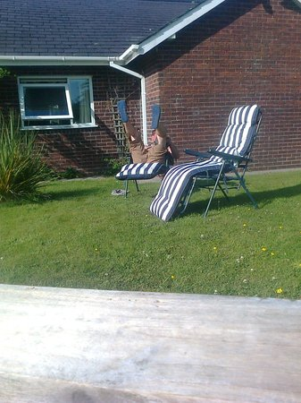 The Stables Guest Accommodation: sun loungers