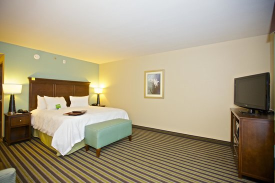 Hampton Inn and Suites Adairsville/Calhoun Area: Free high-speed internet access in all the guest rooms