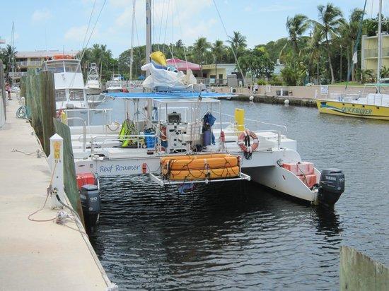 Reef Roamer Snorkel: Le catamaran pour le snorkelling