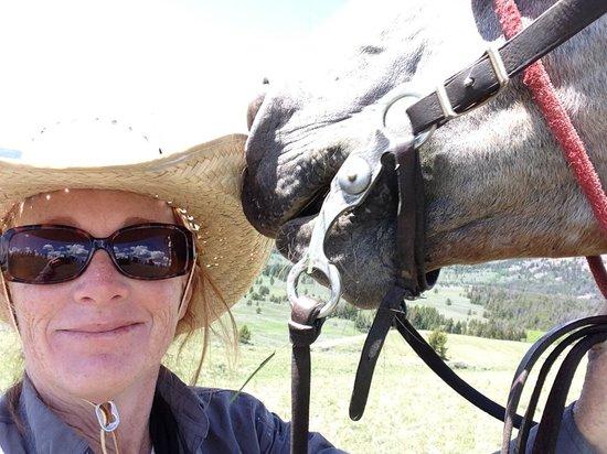 Nine Quarter Circle Ranch: Horse Lovin'