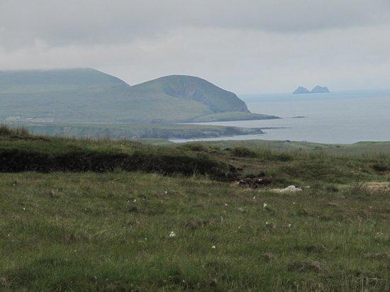Ceide Fields: View along the coast