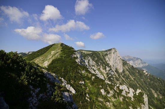 Berggasthof Edelweiss: amazing view