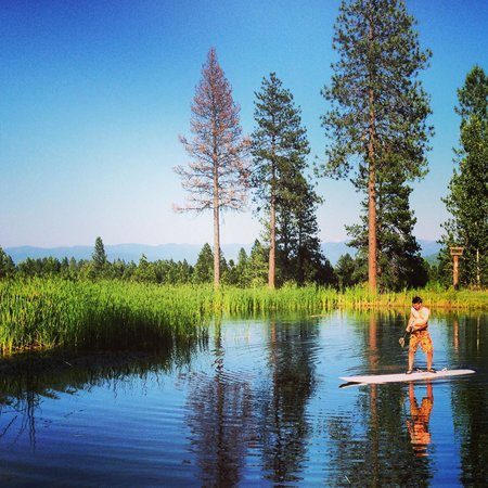 Paddle boarding in the pond