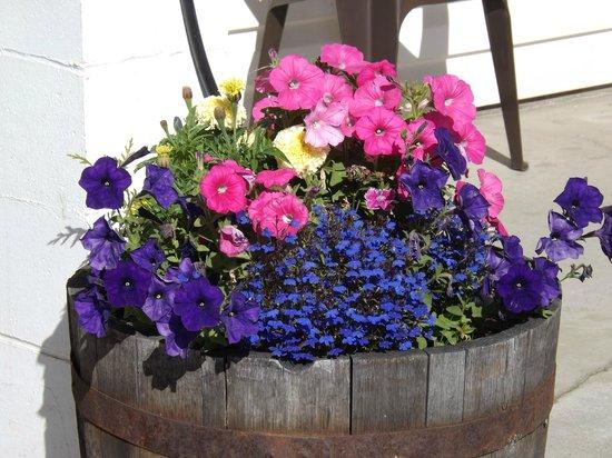 Kootenay Country Inn: Annual Flower Display