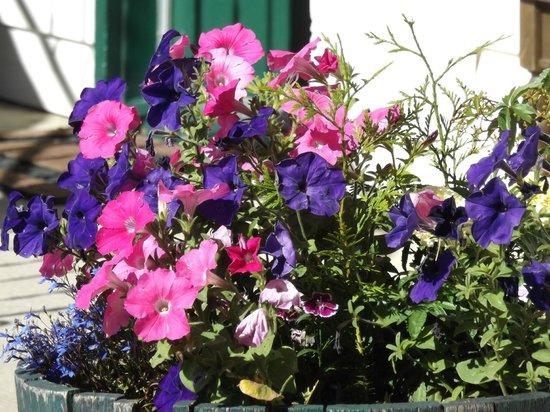 Kootenay Country Inn: More Flower Barrels