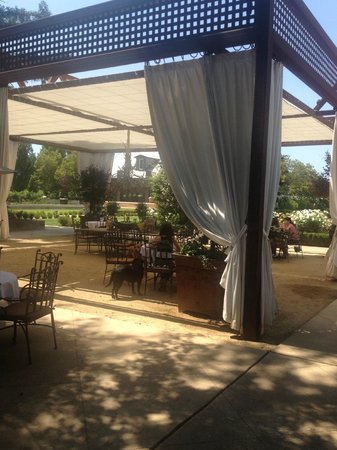 Napa Tours and Chauffeur : One of the beautiful wineries....