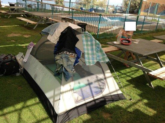 Biankini Dead Sea Resort: Camping place