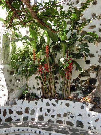 Cafetaria Huerto de las Flores: the garden