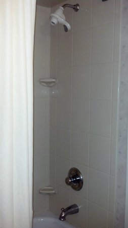 Wingate by Wyndham Erie: Shower
