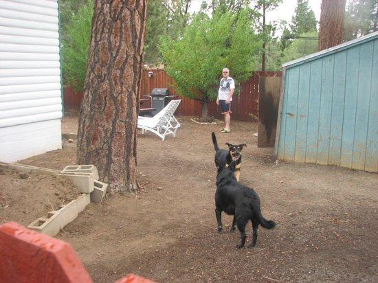 Hillcrest Lodge: private backyard