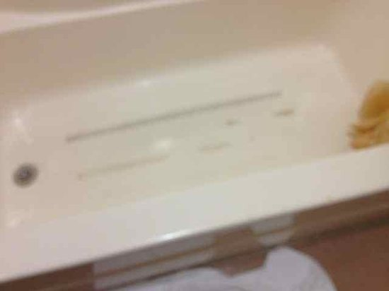 Days Inn Jonesville: Safety strips in bathtub long since worn off; no upkeep done (tub also had a hole)