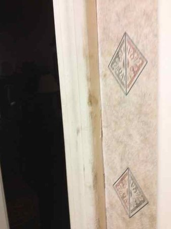 Days Inn Jonesville: More filth on bathroom door jamb