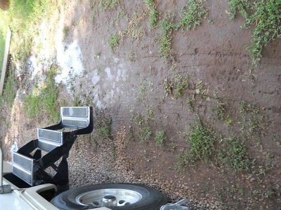 Happy Holiday Resort: water accumulation creating mud