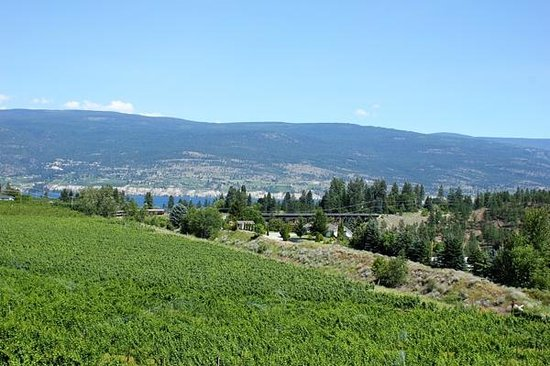 Dirty Laundry Vineyard : Kettle Valley Steam Train in the distance