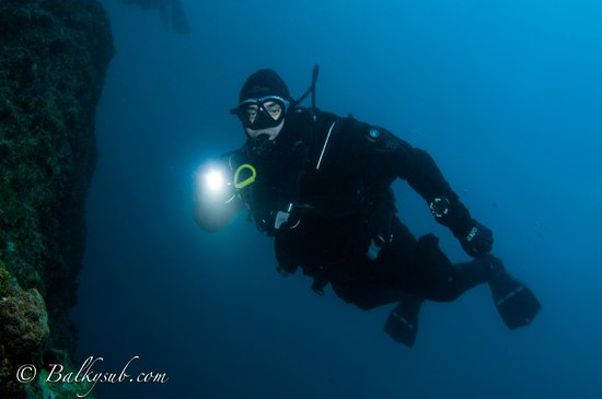 Things2dive Dive Operations