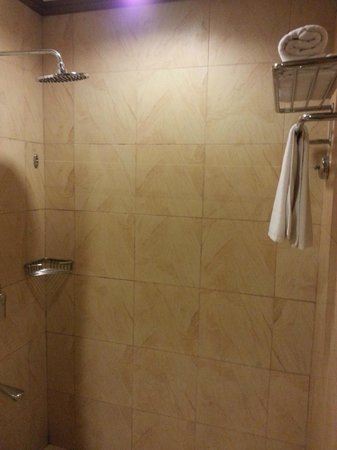 Best Western Boracay Tropics Resort: Rain Shower