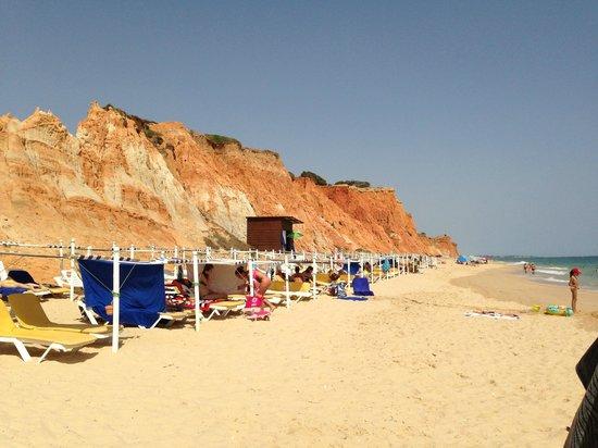 Plage de Falesia : beach