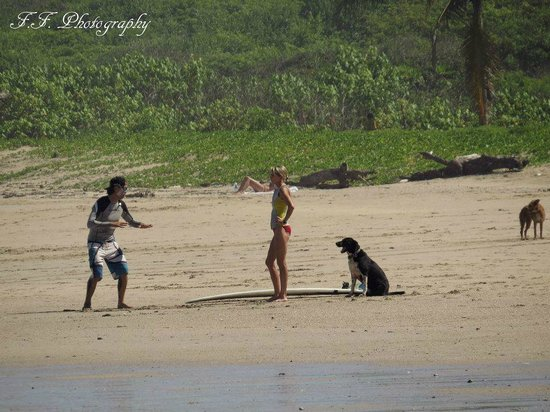 Playa Guiones Surf School: Introduction to surf ,explaining the basics