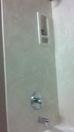 Sheraton Wilmington South: Shower