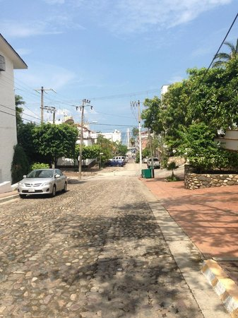Selva Romantica: Street view from front gate of Condo's