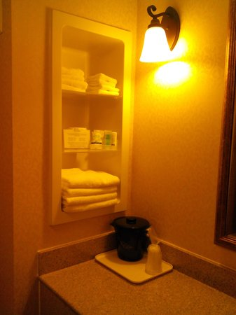 Sleep Inn Bowling Green: Bathroom again