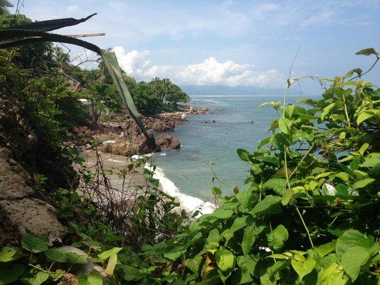 Selva Romantica: local beach at end of PVR. (Secret spot)