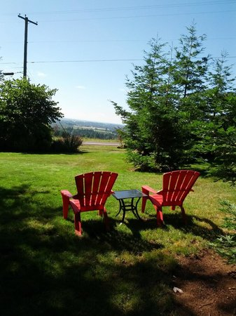 Dundee Manor Bed and Breakfast : View over the Willamette Valley