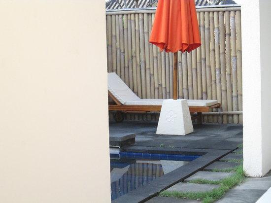 Dewi Dewi Villas: The Pool