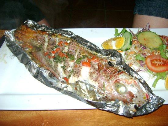El Arado Restaurant: red snapper
