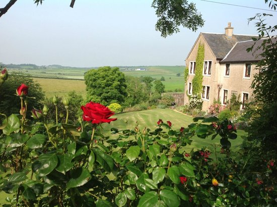 Craigie, UK: Serene view of house from front/side of property