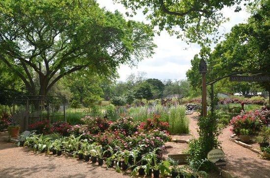 Farm Haus Bistro: Garden Planting