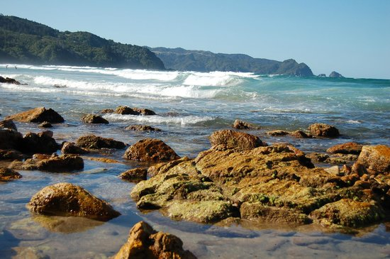 Harbour View Lodge: Tairua Harbourview Lodge Bed and Breakfast Ocean Beach