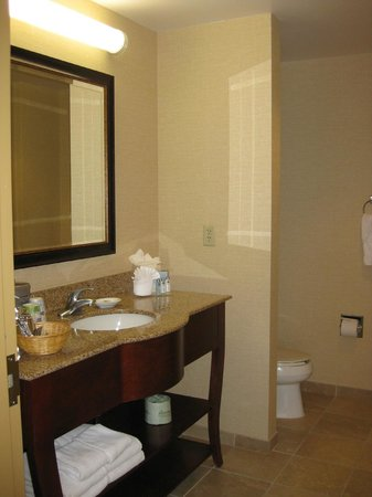 Hampton Inn & Suites Colorado Springs/I-25 South: bathroom