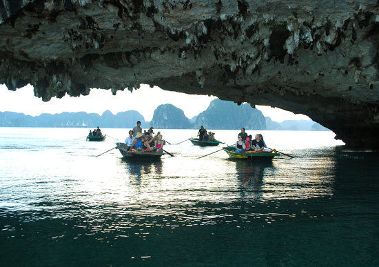 Halong Top Cruise Day Tours