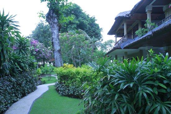 The Sari Beach: отель