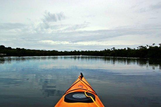 Captiva Kayak Company & Wildside Adventures : Hurricane Hole