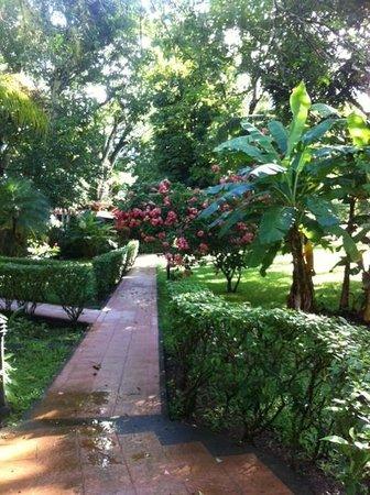 DoceLunas Hotel, Restaurant & Spa: Pathways on the grounds