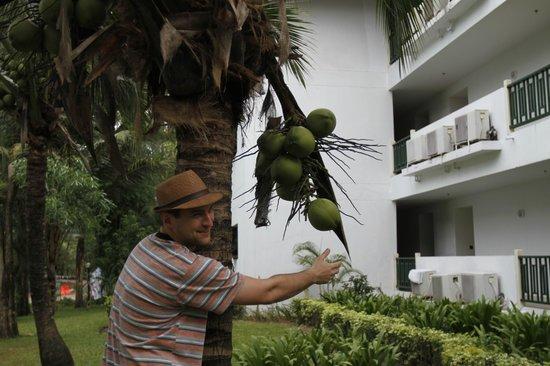 Amora Beach Resort: отель