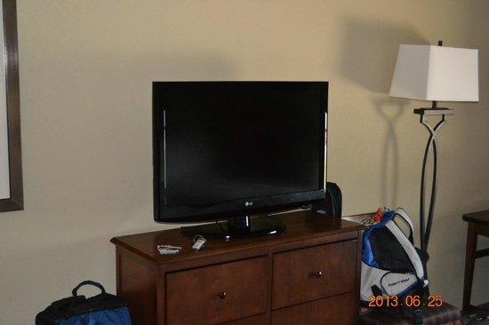 Hampton Inn & Suites St. Louis/South I-55: TV